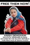 free - anisa dehghani