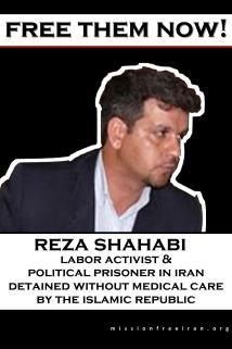 free - reza shahabi